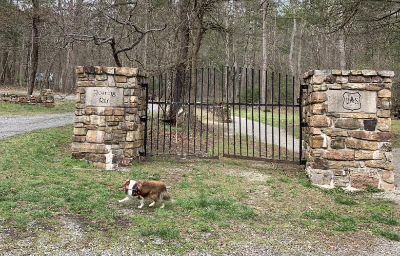 roaring-run-trail-eagle-rock-Virginia