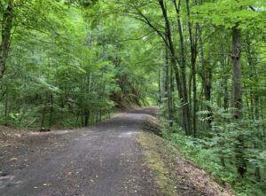 new-river-trail